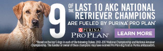 Top Retrievers are Fueled by Purina Pro Plan